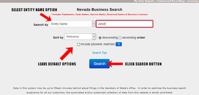 Nevada Corporation Entity Search