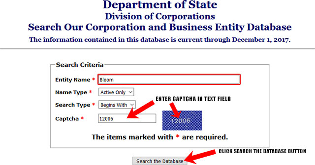 New York Corporation Entity Search