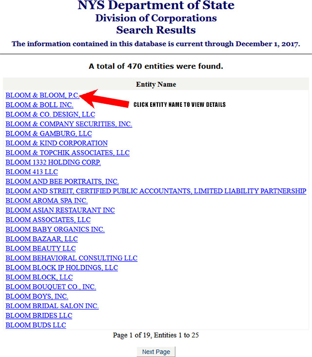 New York Corporation Entity Search Results